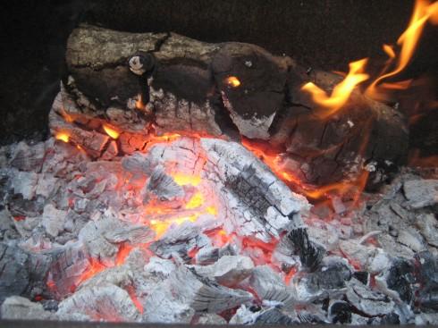 Wood BBQ Fire